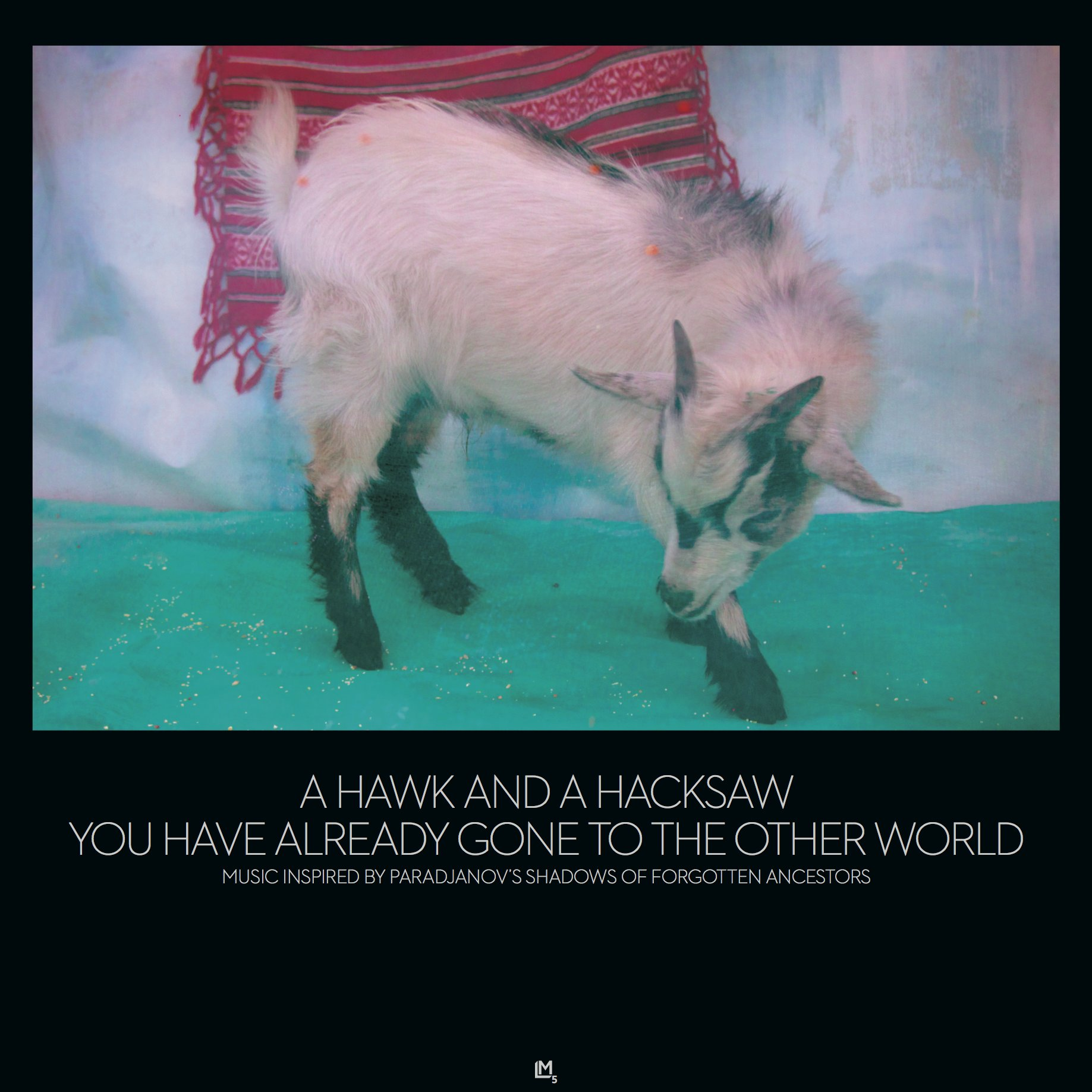A Hawk and a Hacksaw - You Have Already Gone to the Other World album art