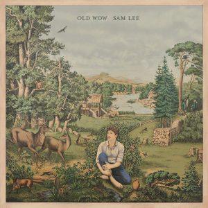 Old Wow Album Art